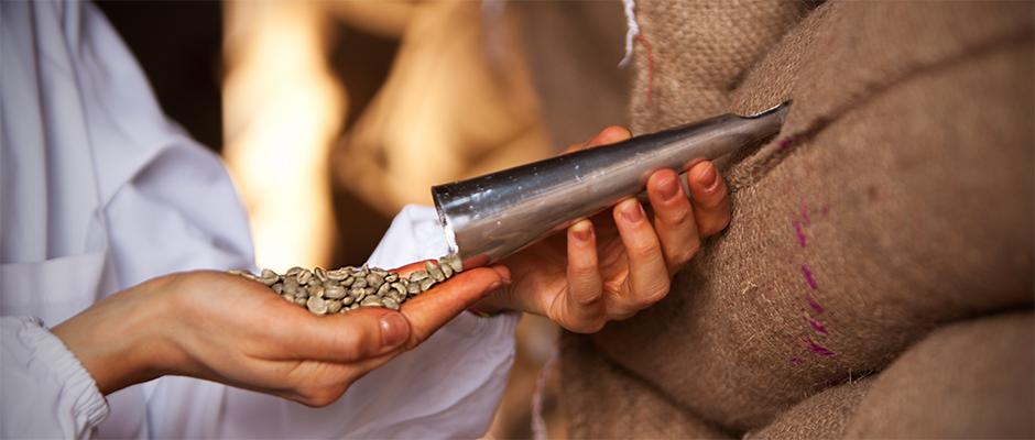 Sobald die Probe bei Hausbrandt eingelangt ist, wird sie vom betriebsinternen Team analysiert. Die Qualität des Produktes wird dann vom Analyselabor auf Sicht und unter dem Mikroskop geprüft. Anschließend werden weitere organoleptische Kontrollen sowohl mit der Infusions- als auch mit der Espresso-Methode durchgeführt.